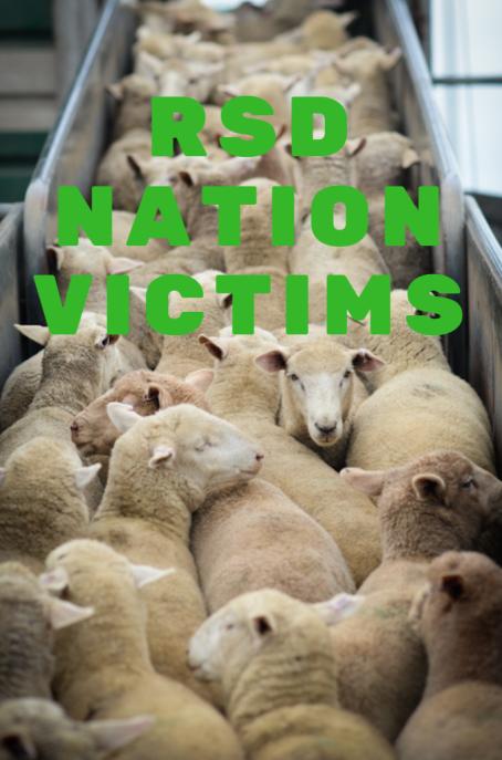 rsd sheeps