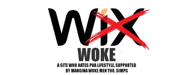 WIX SUCKS