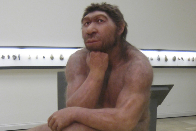 Neanderthal-in-museum-1024x724