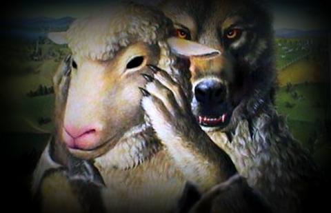 wolf-572x368_orig